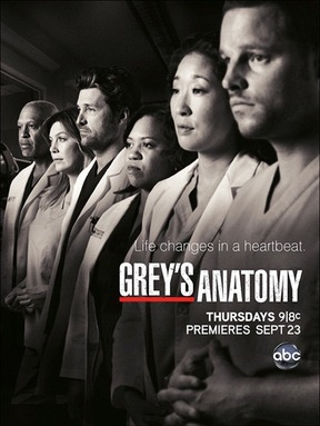Grey's Anatomy - Stagione 10 - ND.