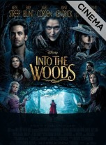 recensione Into The Woods
