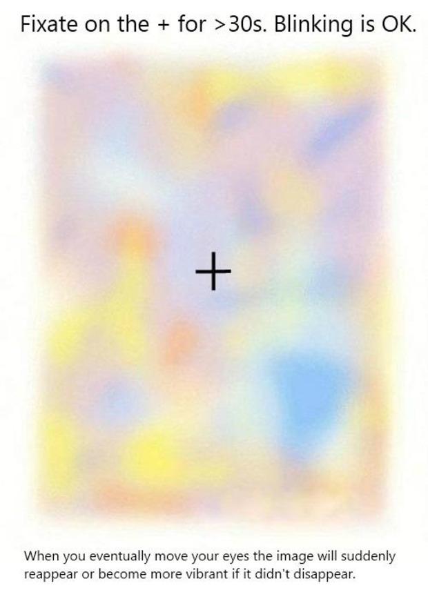 Un'altra bella illusione ottica