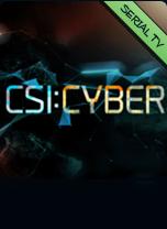 Csi: Cyber - I protagonisti