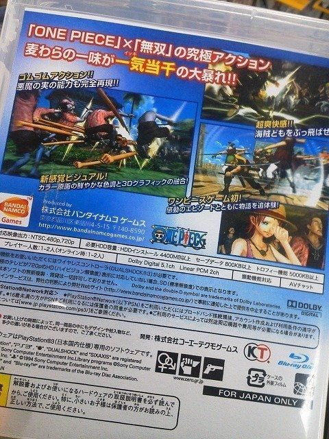 One Piece Pirate Musou dispone di co-op a due giocatori online