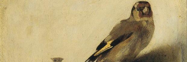 The Goldfinch: Peter Straughan a bordo - Notizia