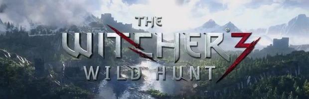 The Witcher 3 Wild Hunt potrebbe non ricevere nessun DLC - Notizia