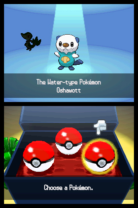 Pokemon-Black--White_NDS_5543.jpg