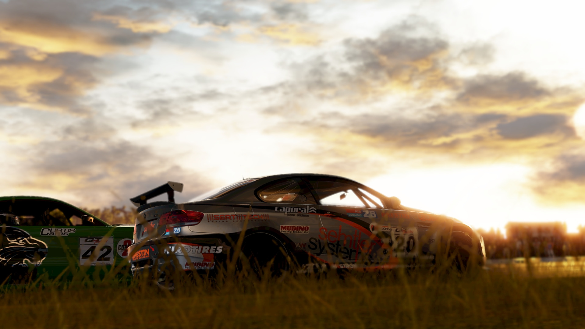 project-cars_PS4_2312.jpg