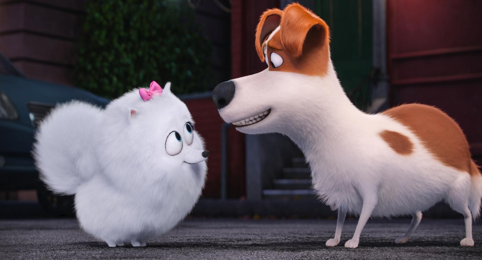 Pets Vita Da Animali I Segreti Degli Amici A 4 Zampe La Recensione
